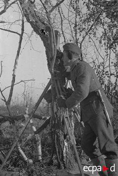 Observation à la binoculaire sur le front de l'Est. Date : 1942-1943