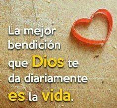 La mejor bendicion que Dios te da diariamente es la vida.