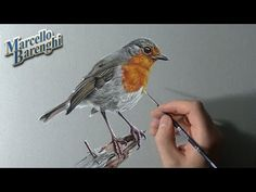 Pen & Ink Drawing Tutorials | How to draw birds - YouTube