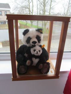 RARE TREASURED STEIFF MOTHER PANDA + CUB IN CASE MOHAIR WITH TAGS