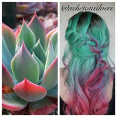 Gorgeous inspiration hair color design and style based on the Southwest's beautiful succulent plants by Asheton Silvers hotonbeauty pastel green hair color melt(Dyed Hair Green) Pastel Green Hair, Green Hair Colors, Hair Dye Colors, Cool Hair Color, Colorful Hair, Lilac Hair, Mint Hair Color, Purple And Green Hair, Bright Hair