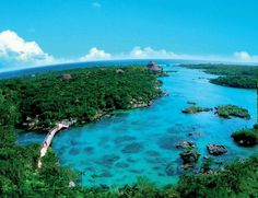 Xel Ha, México. One of the most awesome places on earth.