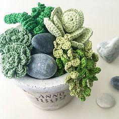 Ravelry: Superb Succulents pattern by Christine Hedwig Crochet Cat Pattern, Crochet Flower Patterns, Crochet Toys Patterns, Crochet Flowers, Crochet Dolls, Crochet Stitches, Crochet Tree, Crochet Cactus, Knit Crochet