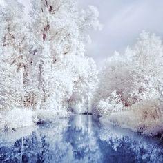 white land