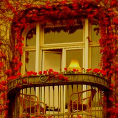 Red, Romantic setting