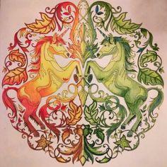 Livro de colorir antistress. Colorido à làpis de cor.