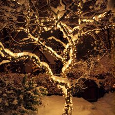Guirlande-Lumineuse-Exterieure-Raccordable-114-Ampoules-12m-Deco-Noel-Jardin