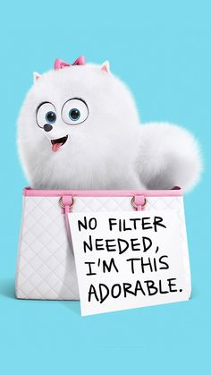 30 HD iPhone Wallaper and Background Ideas Gidget The Secret Life Of Pets Iphone Wallpaper Iphone 7 Wallpaper Backgrounds, Cool Iphone 6 Wallpapers, Disney Phone Wallpaper, Cute Wallpaper For Phone, Cute Cartoon Wallpapers, Cool Wallpapers Vintage, Kitty Wallpaper, Trendy Wallpaper, Cute Bunny Cartoon