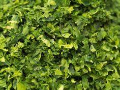 http://www.centreformationbienetre.info/ Les bienfaits des algues Nori