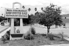 Oyster Bar Restaurant, Raw Oysters, Sarasota Florida, Seafood, Sea Food, Seafood Dishes