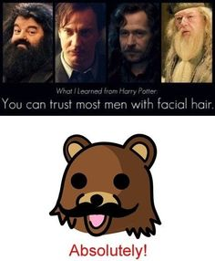 Funny Pedobear Men With Facial Hair- Lol Image