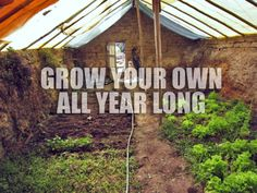 The $300 DIY Greenhouse: How to Build Your Own Walipini
