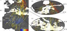 Young birds migrating to Africa dispersed by winds, study shows: A new study of young birds' migration from Europe to Africa showed the…