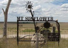 Mt Sunflower
