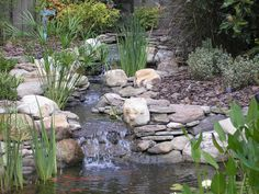 Another perfect example of how a man-made waterfall can be made to look so natural.  Yes, this is coated with Pond Shield epoxy.