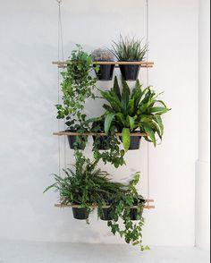 compagnie-three-tier-hanging-plant-shelf-gardenista.png 601×750 pixels