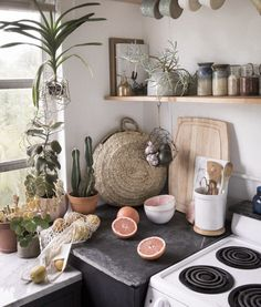 carefully curated tiny kitchen