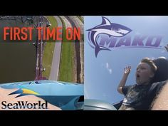 Busch Gardens Falcon's Fury 335 ft Drop Tower OnRide POV Tampa - YouTube