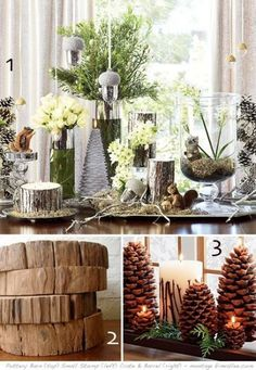 Pottery Barn 2008 - apparently the inspiration for my wedding decor ; Winter Diy, Winter Home Decor, Winter House, Winter Garden, Winter Holidays, Winter Christmas, Natural Christmas, Pottery Barn, Winter Party Themes