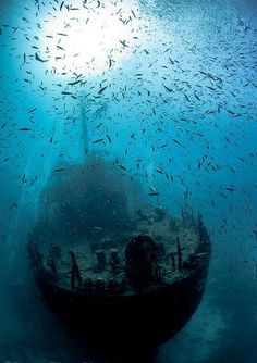 Wreck in the Maldives; photo by Darryl MacDonald