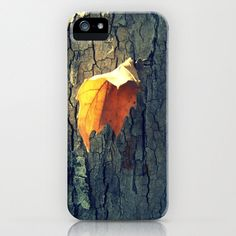 I Phone Case  A Lonely Leaf by autumnraincreations on Etsy, $36.00