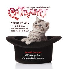 A One-Night Celebrity Musical Celebration of the Alluring Feline; a cat-and-cabaret themed benefit concert, filled with exciting celebrity performances. The one-night-only event is happening  Sunday, August 4 at 7:30pm  at the historic - Belasco Theater in Downtown Los Angeles. Proceeds from this benefit will go toward educational programs for young people and the addition of a small clinic at the the Kitty Bungalow facility.