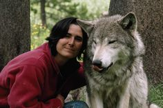 What We Learned From Living With Wolves for 6 Years  Documentarians Jim and Jamie Dutcher say that America's renewed wolf hunts must end.