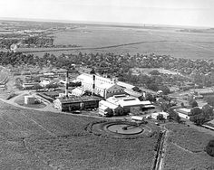 Ewa Plantation's sugar mill in 1955. The sugar industry was celebrating its 120th anniversary in Hawaii that year. Sugar started in Koloa, Kauai, in 1835 and in 1955 was the major industry in the Islands.    IMAGE FROM THE HONOLULU ADVERTISER ARCHIVES