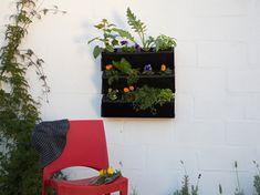 Self-Watering Gardens | Builders