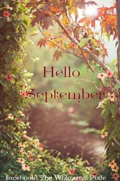 Autumn... Hello September ಌ༺༻⊰✿⊱༺༻ಌ