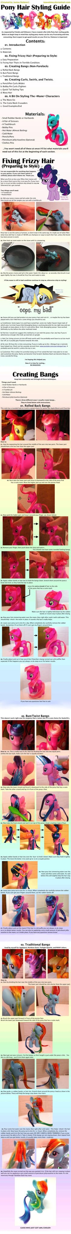 Pony Hair Styling Guide 1/2