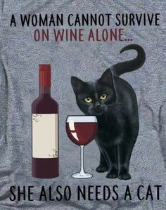 I Love Cats, Cute Cats, Funny Cats, Crazy Cat Lady, Crazy Cats, Black Cat Art, Black Cats, Video Chat, Photo Chat