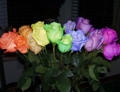 Rainbow Roses | Rainbow_Roses_by_Mebwill.jpg