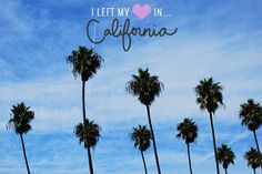 left my heart in California
