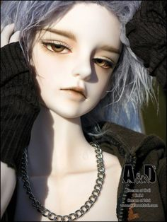 Amazing Japanese BJD doll (ball-jointed) Pretty grey hair