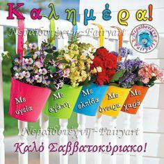 Good Night, Good Morning, Yard, Beautiful, Nighty Night, Buen Dia, Patio, Bonjour, Courtyards
