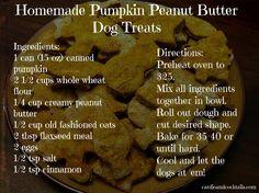 Homemade dog treats Pumpkin Peanut Butter
