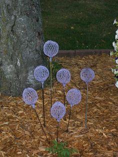 Faux Allium - Garden Junk Forum - GardenWeb