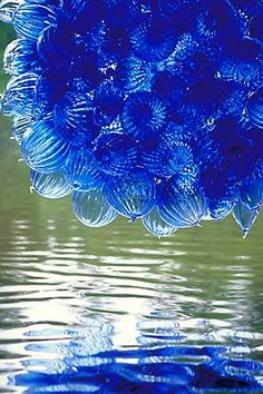Dale Chihuly chandelier…have you ever seen a more beautiful light fixture? Dale Chihuly, Chihuly Chandelier, Blue Chandelier, Wow Art, Hand Blown Glass, Colored Glass, Oeuvre D'art, Shades Of Blue, Les Oeuvres