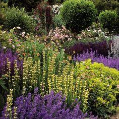 Mottisfont Abbey Gardens, Hampshire, UK What a lovely garden, beutiful colours photo by ukgardensphotos Amazing Gardens, Beautiful Gardens, Landscape Design, Garden Design, English Country Gardens, Herbaceous Perennials, Beautiful Flowers Garden, Romantic Roses, Different Plants