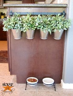 Bring your apartment garden indoors - hang your plants or herbs off of a bar.