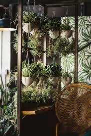 Image result for kampai garden Garden, Plants, Image, Outer Space, Garten, Lawn And Garden, Gardens, Plant, Gardening