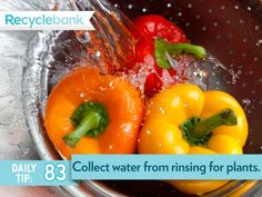 Collect the water you use for rinsing fruits and vegetables, then reuse it to water houseplants.Wow interesting I will.