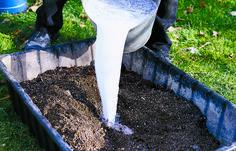 How to Make a Garden Trough (Hypertufa Planter): 9 Steps (with Pictures) Diy Garden Projects, Garden Crafts, Garden Art, Garden Design, Garden Paths, Garden Flags, Cement Planters, Diy Planters, Garden Planters
