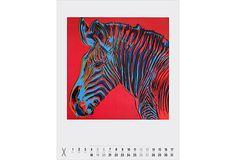 Andy Warhol, Endangered Grevy's Zebra