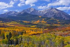 Mount Sopris Morning White River National Forest, Colorado