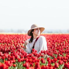 Visited the tulip festival a couple days ago. It was beautiful but my allergies weren't feeling it @filmandpixel | #skagitvalleytulipfestival