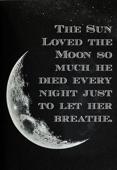 the sun loved the moon