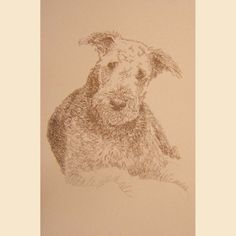 Airedale Terrier Artist Kline draws dog art using only by drawDOGS, $59.95