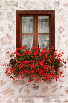 European window ledge flowers